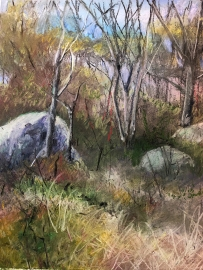 Dogtown Common, pastel on paper